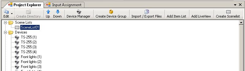 Picture 4: Scenelist in the Project Explorer